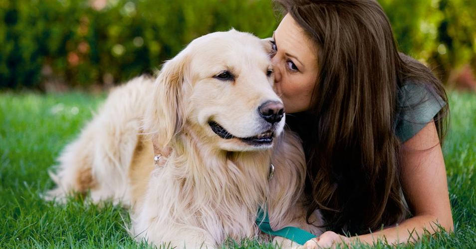 Ama cachorros e gatos, mas tem rinite? Veja minhas dicas (Foto: internet)